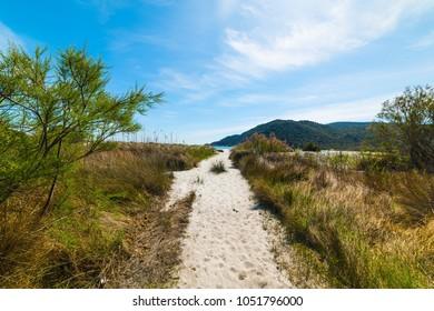 Walk path to the beach in Cala Pira. Sardinia, Italy