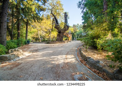 A walk in Rodini park in city of Rhodes (Rhodes, Greece)