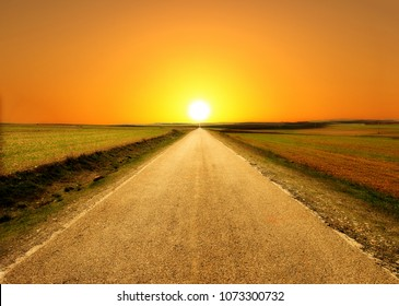 I walk through the field with the sun in the background, Spain