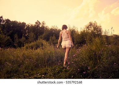 Walk through the meadow in the color of the setting sun