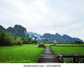 walk way form Wood with natural green rice paddy field on beautiful sky and cloud background.