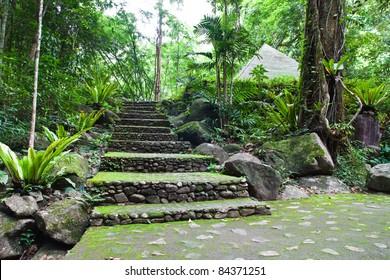 Walk way in Namtokphlio National Park,Chantaburi Province, ,Thailand.
