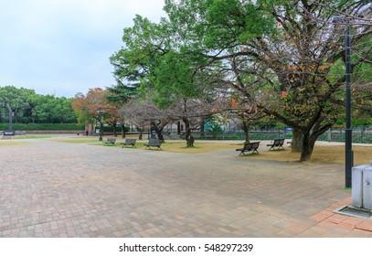 walk way in natural ground zero park