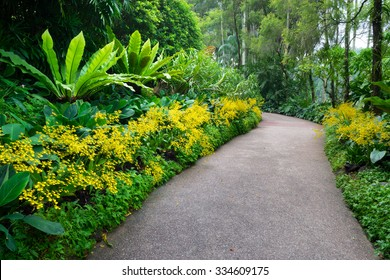 Walk way with orchid from Singapore National Orchid Garden