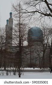 walk in the winter Petersburg