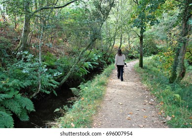 A walk in the woods, peace, calm, serenity, harmony, fullness, well-being, nature, natural, contemplate, meditate, breathe, grow,happiness,tranquility, fulfillment, integration,