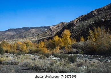 Walker Canyon in autumn. California, USA