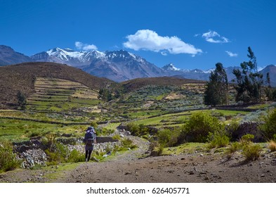 Walker in nature, colca canyon