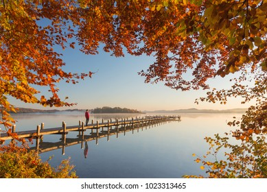 Walker on pier with autumn foliage at lake Woerthsee, Bavaria, Germany