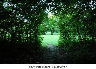 a walkin in the park