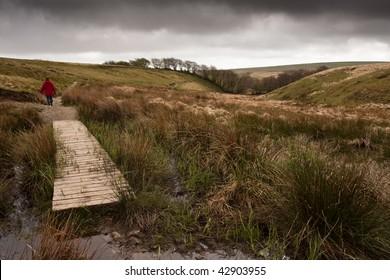 Walking across the rugged terrain of Exmoor