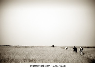Walking across steppes