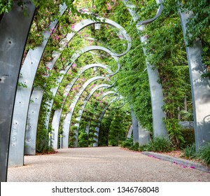 Walking alley with nice green plants and shaped posts. Beautiful, relaxing garden alley in Southbank, Brisbane