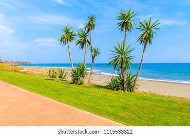 Walking alley with palm trees along beach near Estepona town on Costa del Sol, Spain