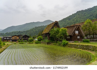 Walking Around Shirakawago