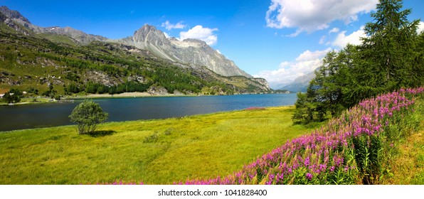 Walking around Sils Lake on Engadine Valley (Switzerland - Europe).