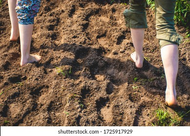 Walking barefoot through muddy road in nature. Barefoot trail. Shoeless womens legs. Grounding, or earthing, making contact with the earth. Bare feet