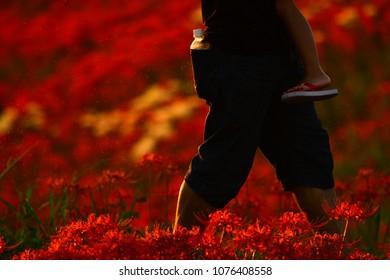 Walking in the Beautiful Flowers