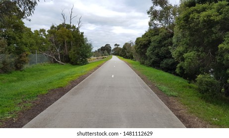 walking and biking path through the woods with asphalt road
