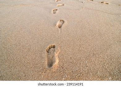 Walking by the seashore in the summer