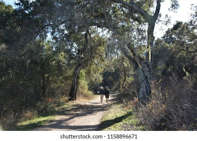 A walking couple in the park, Garland Ranch Regional Park, California