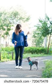 Walking for a dog, lady, walking, running