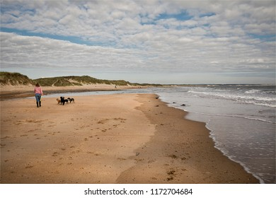 Walking the dogs on Druridge Bay. The seven mile stretch of sand in Northumberland is a popular place to exercise dogs and it is very seldom crowded.