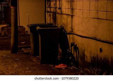 Walking at midnight, empty dust bin at road side