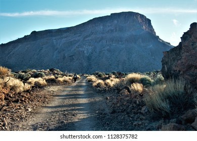 walking on desert, Series of photographs of the Cañadas in the Teide National Park, in Tenerife,Canary Islands, Spain,-