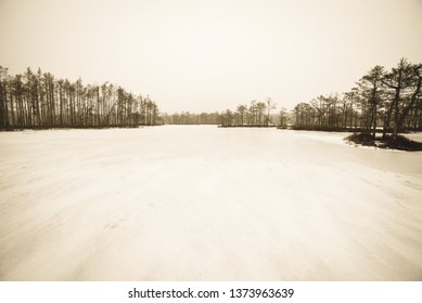 walking on a frozen forest lake with no snow and fog all over the horizon. misty winter day - vintage retro look