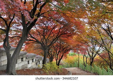 Walking path along the fortress wall of Bugaksan mountain near Seoul, South korea.The wall stretches 18.6 km along the ridge of Seoul's four inner mountains, Baegaksan, Naksan, Namsan, and Inwangsan