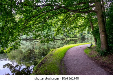 walking path along a pond with a bench at Haagse Bos, forest in The Hague, Netherlands, Europe