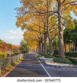 Walking Path along side Nagoya Castle in Nagoya