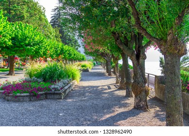 Walking path covered with trees in Bellagio, Como lake, Lombardy, Italy. Nature landscape.
