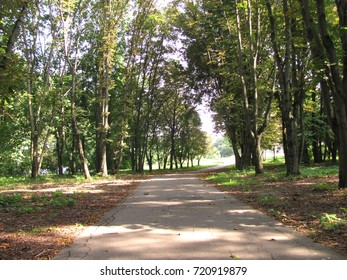 A walking path in early autumn park, Moscow region