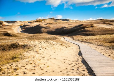 walking path in the nature reserve with sand dunes in Curonian Spit, Lithuania