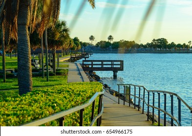 Walking path with palm trees in-line, at Demens Landing Park, Downtown St. Petersburg, Florida.