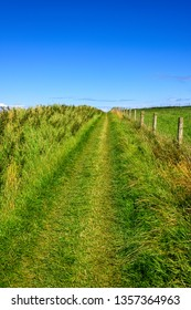 Walking path through a meadow at Giants Causeway in Northern Ireland