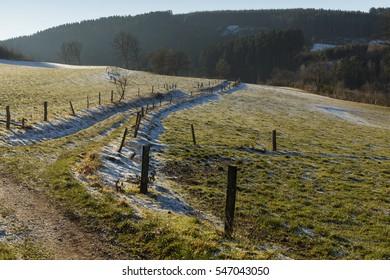 walking path winter