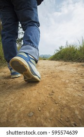 Walking or running legs in forest, adventure  in summer nature
