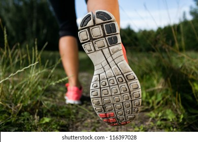 Walking or running shoes in forest, adventure and exercising in summer nature
