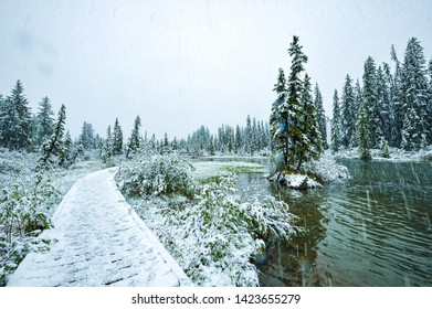 Walking in the snow, Canmore, Banff National Park Canada