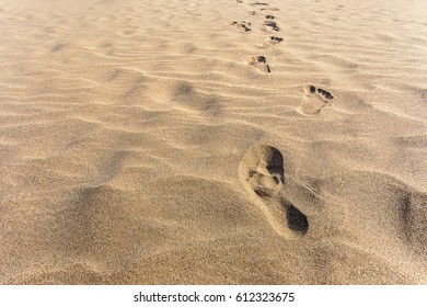 Walking step footprints in the sand on the beach