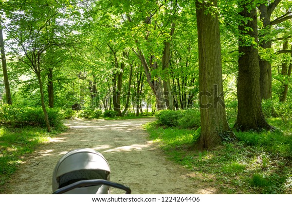 Walking with stroller in green fresh Park