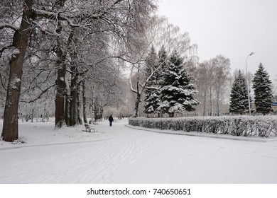 A walking track in the city Park covered with snow.