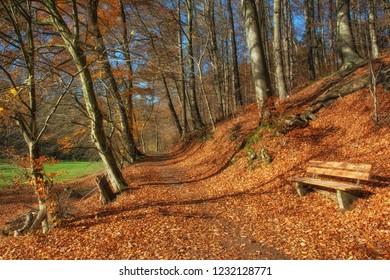 walking Trail in famous Neandertal near Mettmann,North Rhine westphalia,Germany