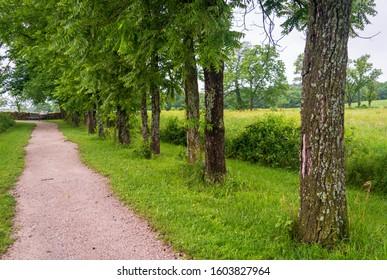 Walking Trail George Washington Carver National Monument Next to Treeline Fence