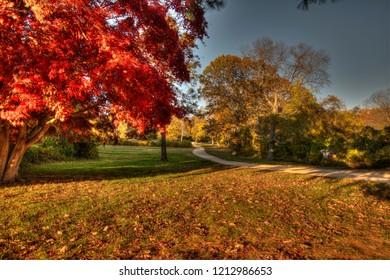Walking trail in Hartshorne Woods Park in Locust, New Jersey.