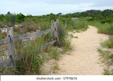 walking trail near the beach area on an island near the Atlantic ocean on the East Coast of the United States