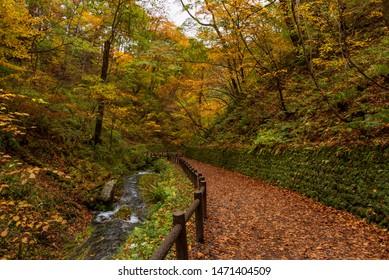 Walking trail to Shiraito fall during autumn season, Karuizawa, Japan.